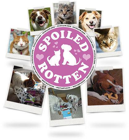 spoiled_rotten_logo.jpg